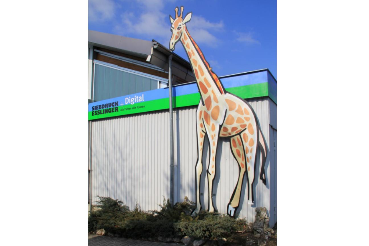 Giraffe XXL